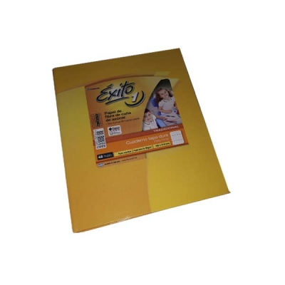 Cuaderno T/d 16x21 Exito 48 Hj Ry P/forr